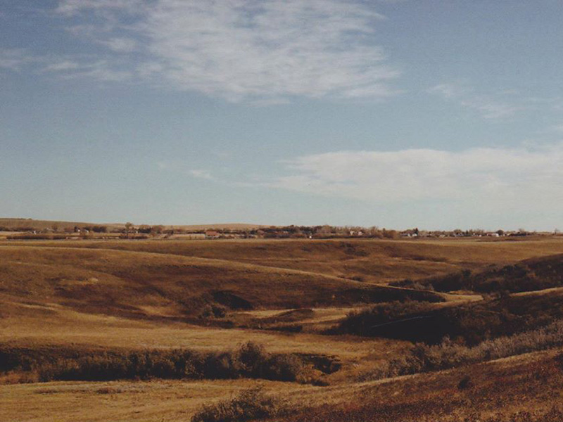 A photo of the prairie from Alyssa Duck Chief's I'm Only Going to Show You Once, Now You Try