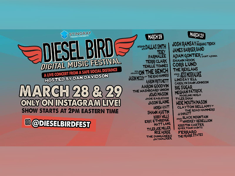 A poster for the Diesel Bird Digital Music Festival