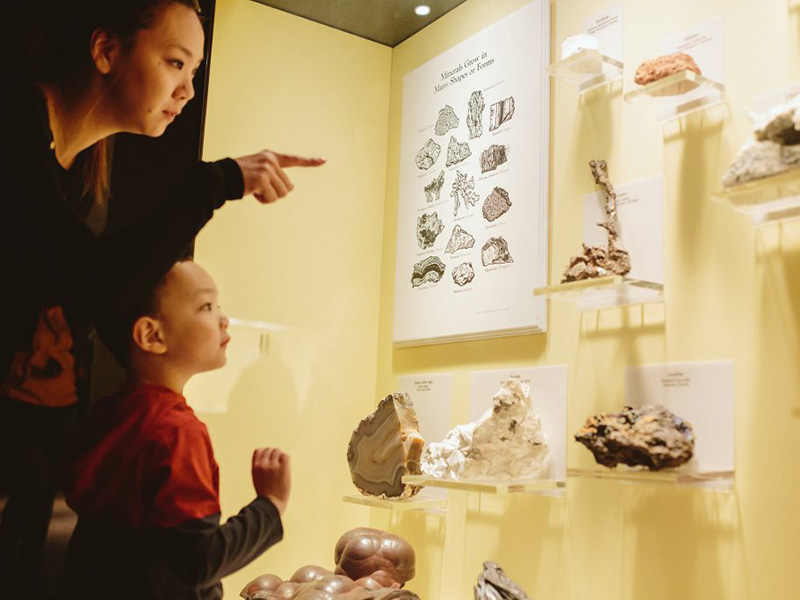 A family explores the Treasures of the Mineral World at Glenbow
