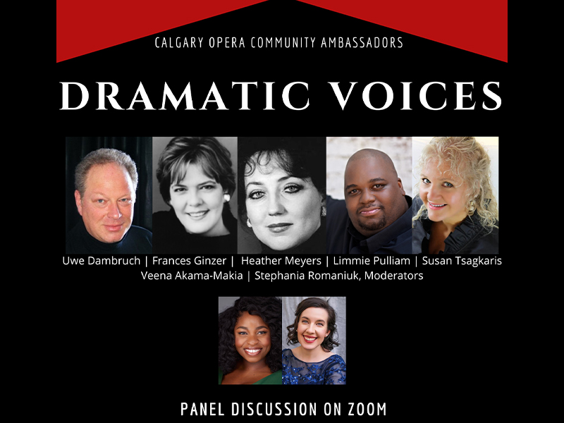 An image of an ad for Dramatic Voices